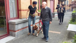 Des chiens apportent de la joie aux résidents d'une maison de repos de Molenbeek